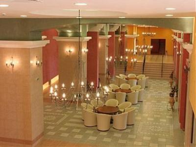 Hotel Hrizantema****